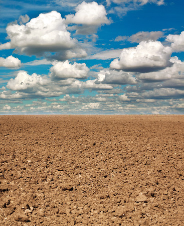 non cultivated: Dry plowed earth agricultural land, on background blue sky and white clouds Stock Photo