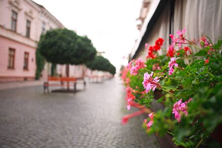 Blurred background bokeh pedestrian street of an old European city