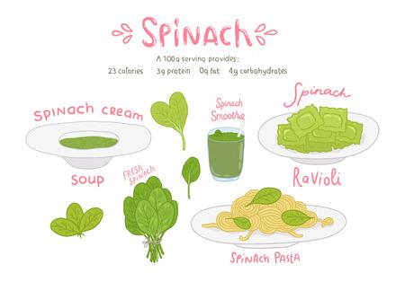 spinat: Cartoon Hand gezeichnet Spinat Nahrungsmittelset