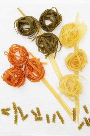 Pasta products nests of different colors on a white background. Copy of space. 免版税图像