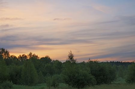 reveille: A beautiful sunrise, clouds, painted in red and orange colors, the trees in the meadow, the morning mist