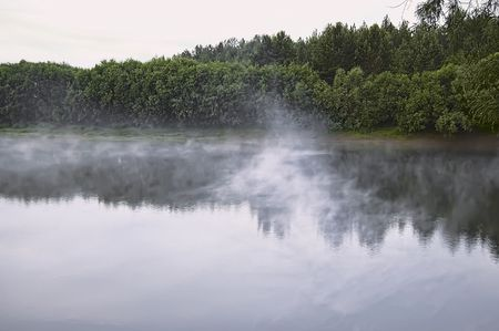 reveille: Fog over the water of the river, green trees and bushes on the shore, the sky at dawn