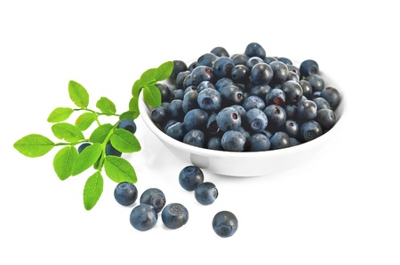 Blueberries in a white porcelain bowl with a green twig and leaf isolated on a white background Stock Photo