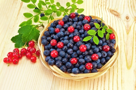 Blueberries with red currants in a wicker basket, a sprig of blueberries and red currants with green leaves on a light wooden board photo
