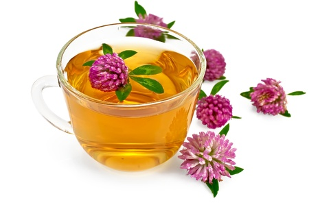 Herbal teas with clover in a glass bowl, flowers of clover isolated on white background photo