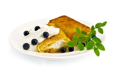 rubicund: Two pancakes with cottage cheese, blueberries and a branch on a white porcelain plate, isolated on white background Stock Photo