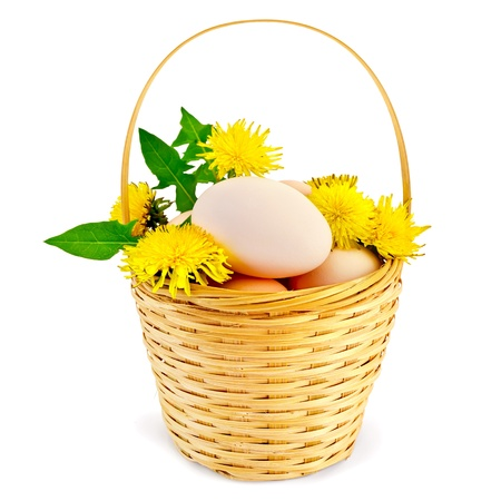 Eggs in a wicker basket with flowers and leaves of the dandelion is isolated on a white background photo