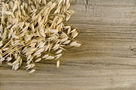Stalks of oats on the background of the old wooden boards