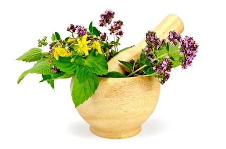 Sprigs of mint, lemon balm, oregano, tutsan, sage leaves in a wooden mortar isolated on white background Stock Photo - 16915071