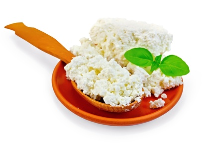 Cottage cheese in a wooden spoon and a clay plate with a sprig of green basil isolated on white background photo