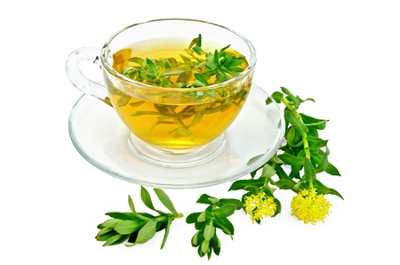officinal: Healing herbal tea in glass cup with flowers Rhodiola rosea is isolated on a white background Stock Photo