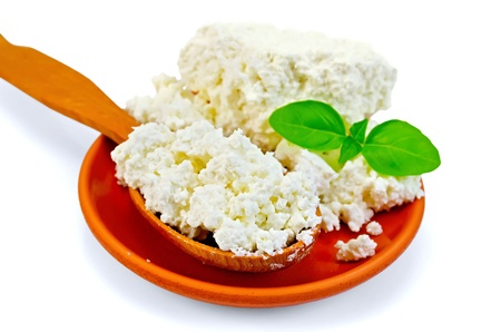 Cottage cheese in a wooden spoon and a clay plate with a green basil isolated on white background photo