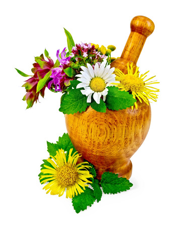 Sprigs of mint, lemon balm, flowers of oregano, tansy, chamomile, elecampane, bergamot in a wooden mortar on the table isolated on white background photo
