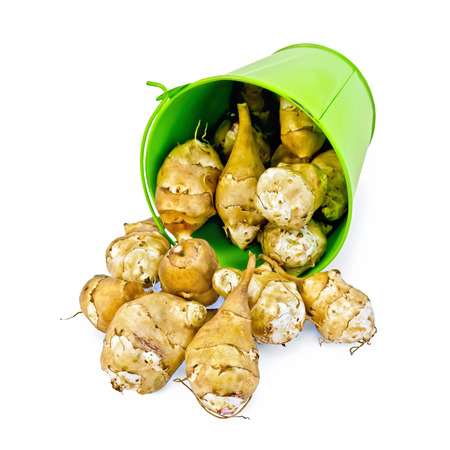 Pile of Jerusalem artichoke poured out a small green bucket isolated on white  photo