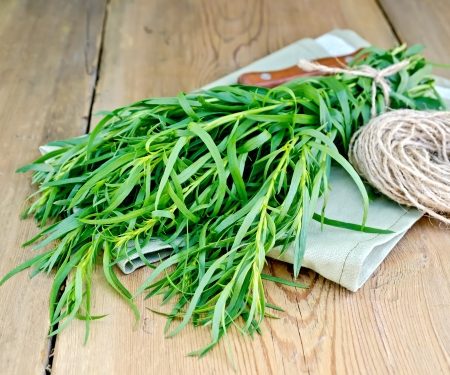 Tarragon fresh green with a ball of twine and a knife on a napkin on the background of wooden boards Archivio Fotografico