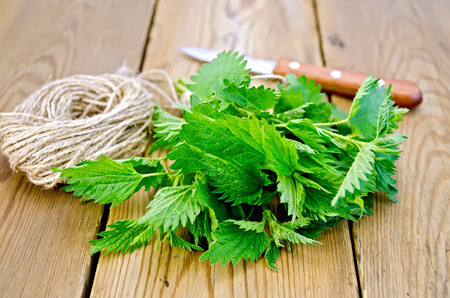 Bunch of fresh green nettle, knife, ball of twine on a wooden boards background