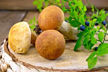 billet: Ceps with blueberries on birch billet Stock Photo