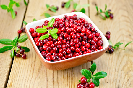 Lingonberry red in bowl on board Stock Photo