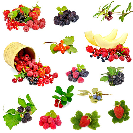 birchbark: Set photos of raspberries, strawberries, blackberries, cranberries, hawthorn, cherry, chokeberry, black and red currants isolated on a white background
