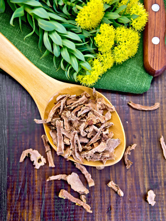 Spoon with dry roots of Rhodiola rosea, knife, fresh flowers Rhodiola rosea on a dark wooden board