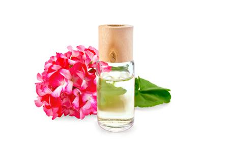緑の葉と白い背景に分離されたピンクのゼラニウムの花油のボトル 1 本