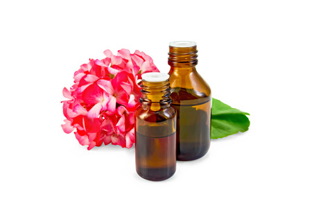 geranium color: Two dark oil bottle with green leaf and flower of pink geranium isolated on white background Stock Photo