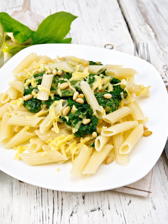 cedro: Penne pasta with spinach and cedar nuts in a plate on a napkin on a wooden board background Foto de archivo