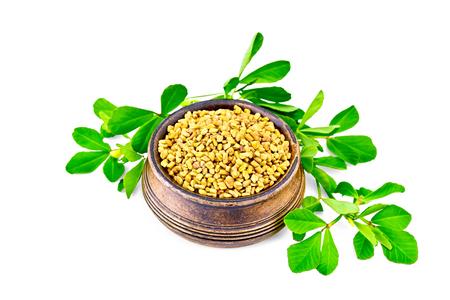 Nasiona kozieradki w małej misce z zielonymi liśćmi na białym tle