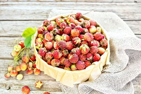 Wild ripe strawberries in a birch bark box with parchment on sackcloth against the background of wooden boards Imagens - 127033957