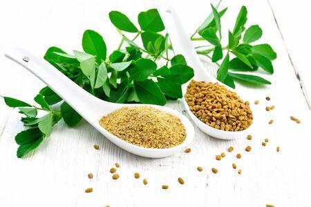 Nasiona kozieradki i mielona przyprawa w dwóch łyżkach i na stole z zielonymi liśćmi na tle drewnianej deski