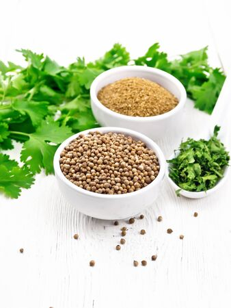 Coriander seeds and ground in two bowls, dried cilantro in a spoon, seasoning greens on wooden board background 免版税图像