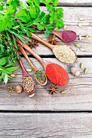 Hot pepper, ginger, coriander, dried thyme and sumac in spoons, nutmeg, cardamom, star anise and fenugreek, rosemary, parsley, thyme, mint and savory on background of an old wooden board from above Reklamní fotografie