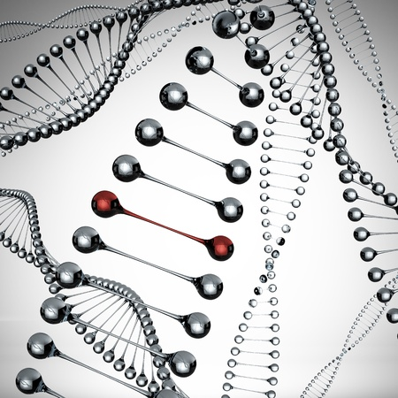 chromosome: Models of the dna molecule Stock Photo