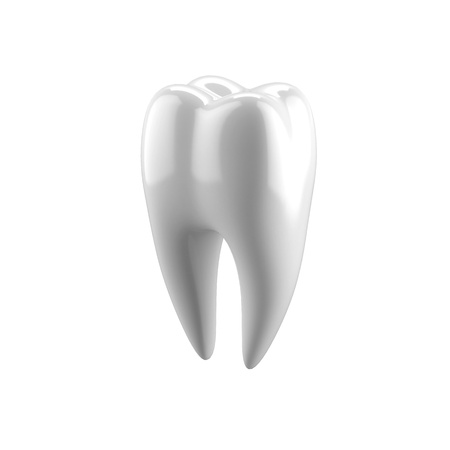 White human tooth photo