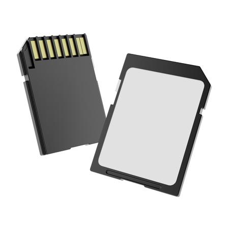compact camera: SD cards