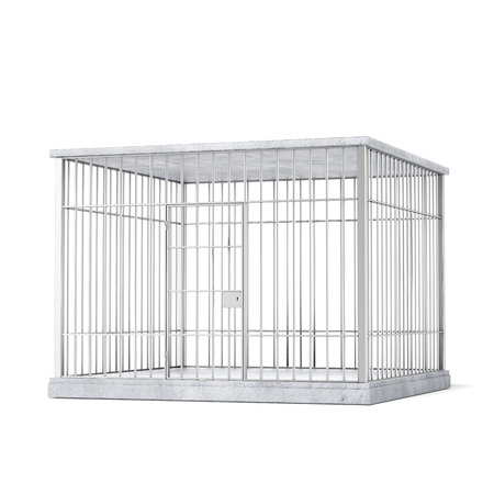 prison break: steel cage  isolated on a white background Stock Photo