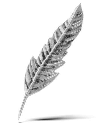 jewelle: Old silver feather isolated on a white background