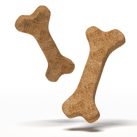 dog biscuit: Brown dog biscuit   isolated on a white background