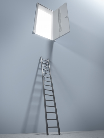 unsuccessful: Small ladder and door. 3d render Stock Photo