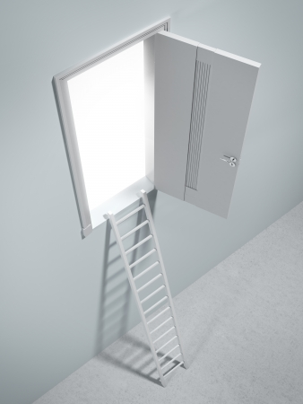 Ladder to the door. 3d render photo