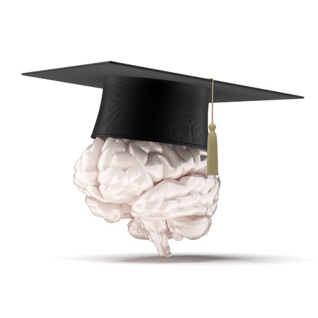 brain with graduation hat  isolated on a white . 3d render Stock Photo - 24430969