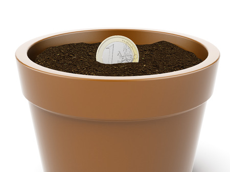 Seedlings on a euro coin  isolated on a white background. 3d render photo