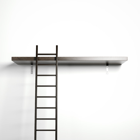 ladder: Ladder and wooden shelf