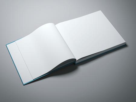 hoja en blanco: Abierto libro con páginas en blanco