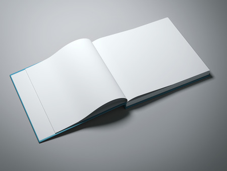 paperback book: Opened book with blank pages