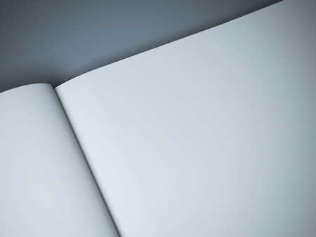open diary: blank magazine spread on the gray background Stock Photo