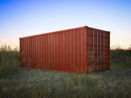Red cargo container in a field with green grass. 3d rendering