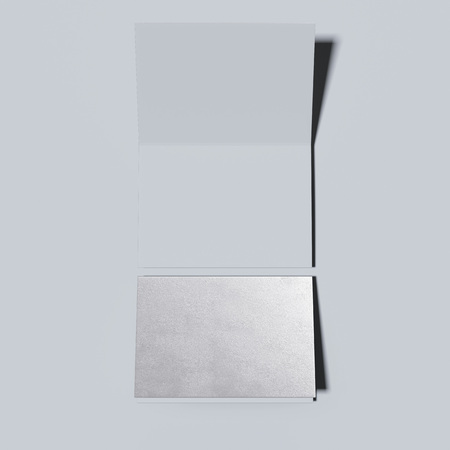 unfolded: Silver closed and opened leaflets. 3d rendering Stock Photo