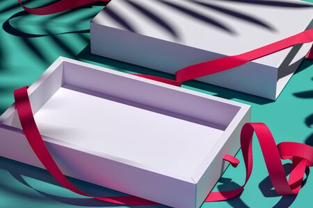 Side View Of White Open Blank Cardboard Box With Red Ribbon Near Palm Leaves. 3d rendering. Copy and Empty Space. Stock fotó