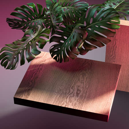 Wooden showcase and monstera plant for branding and product presentation. Luxury wooden pedestal for natural products advertising. Copy space. Empty space. Realistic 3d rendering Banque d'images